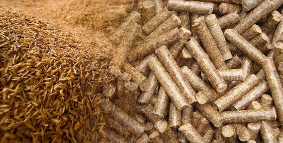 rice_husk_pellets_industry1
